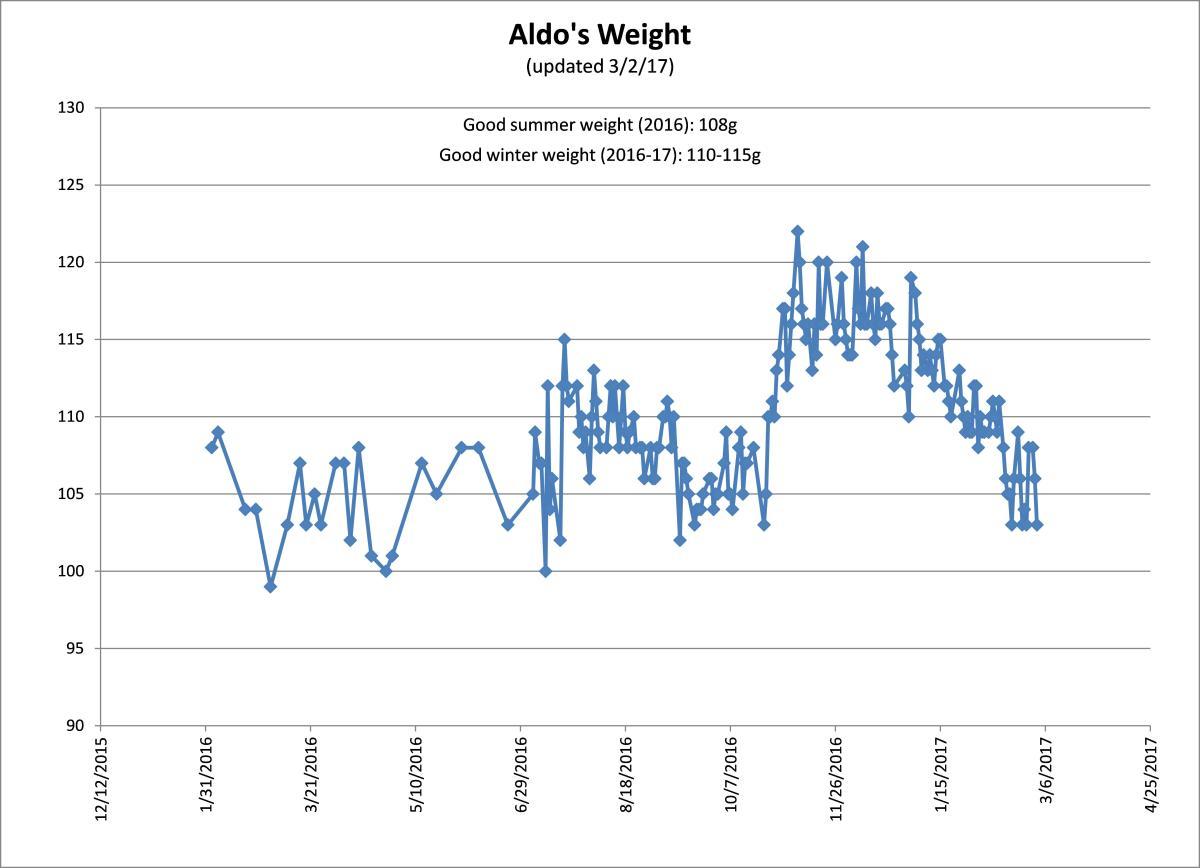 Aldo weight chart.jpg