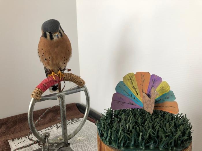 Aldo and a turkey.JPG